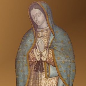 Read more about the article Our Precious Lady of Flowers